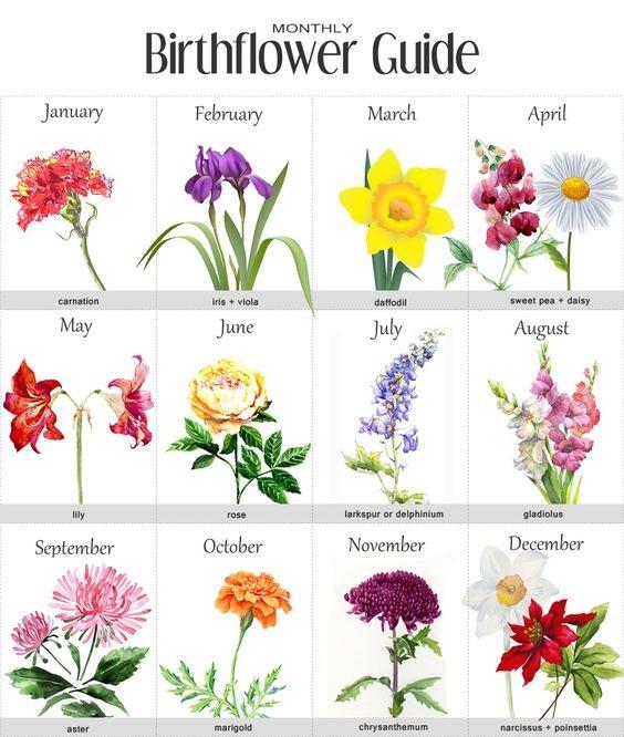 alt=birthflower
